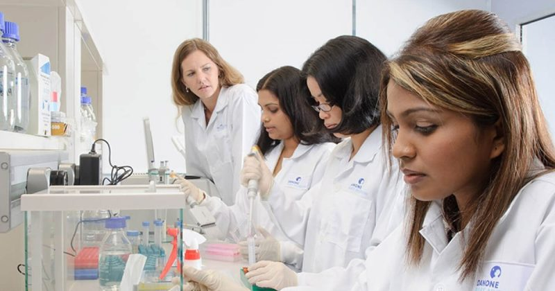 Researchers working in laboratory